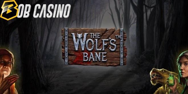 Online Casino Spiel App