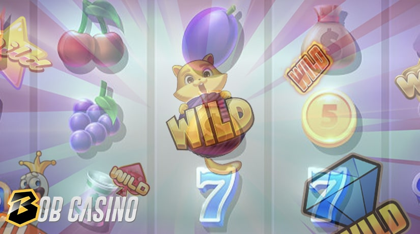 Wild Symbol in Casino Games