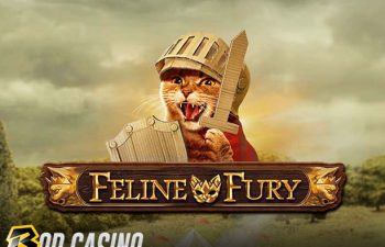 Feline Fury Slot Review on Bob Casino