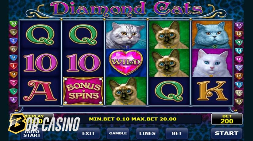 Diamond Cats - one of the most popular Amatic slots.